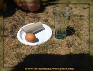 Egg Drop 5