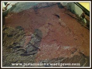 Chocolate Brownie 3