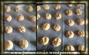 Oatmeal Cookie 8