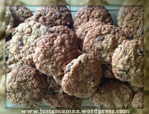 Oatmeal Cookies 10