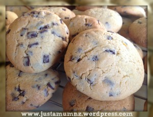 Orange Choc Chip Cookies 4
