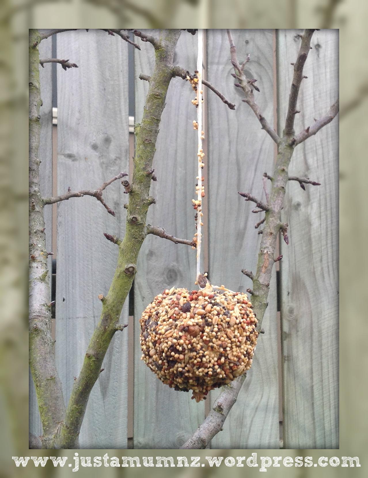 Guirnalda de alimentación para pájaros hecha a mano ⋆ Azúcar, especias y brillo